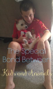The Special Bond Between Kids and Animals